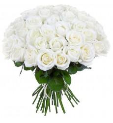 Букет из 25, 51 или 75 белых роз «Queen»