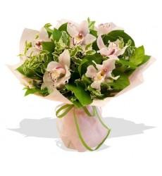 Букет из 7 орхидей «Медея»