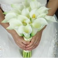 Букет невесты из 15 крупных калл «Истинная королева»