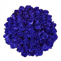 Букет из 75 синих роз «Сияющая глубина»