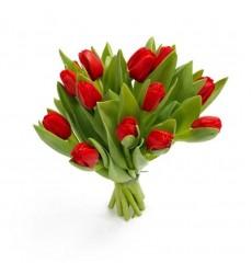 Букет из 11 красных тюльпанов «Весенний пурпур»