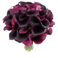 Букет из 10 фиолетовых калл и 15 калл Odessa «Бордовая ночь»