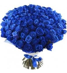 Букет из 101 синей розы «Завораживающая ночь»