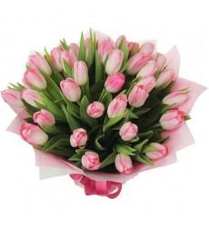 Букет из 31 розового тюльпана «Весенний холст»