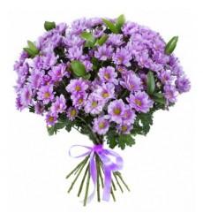 Букет из 17 кустовых хризантем «Бархатный поцелуй»