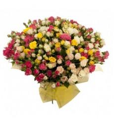 Букет из 35 разноцветных кустовых роз «Гимназистка»