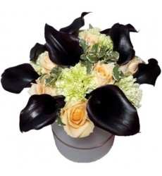 Цветы в коробке  с 9 каллами, 8 розами Пич Аваланж и 6 гвоздиками «Калипсо»