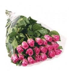 Букет из 21 розовой розы «Голос нежности»