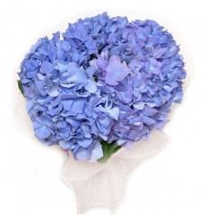 Букет из 5 голубых гортензий «Воздушная нежность»