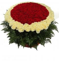 Корзина цветов с 201 розой Гран При и 100 белыми розами «Пылкая страсть»