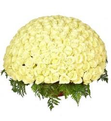 Корзина цветов со 151 белой розой «Нежность королевы»