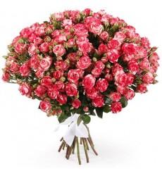 Букет из 21 кустовой розы «Розовый пунш»