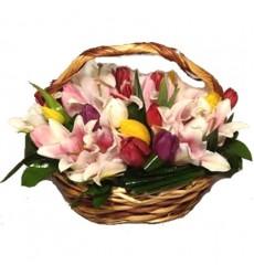 Корзина цветов с 19 тюльпанами и 2 лилиями «Завораживающий сон»