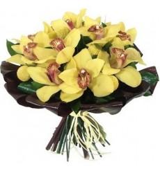 Букет из 11 жёлтых орхидей «Золотая колесница»