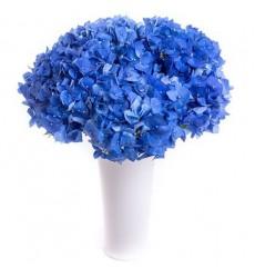 Букет из 5 синих гортензий «Черничные ночи»