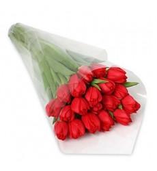 Букет из 17 тюльпанов «Мисс Марта»
