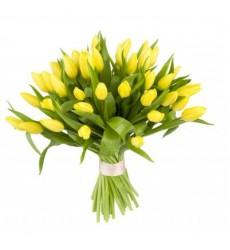 Букет из 49 жёлтых тюльпанов «Первые лучи»