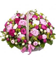 Корзина цветов с 75 голландскими пионами и 10 буплерумами «Весна в Амстердаме»