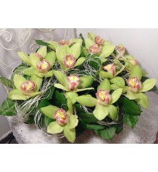 Корзина цветов с 15 орхидеями «Магия изыска»
