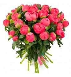 Букет из 27 пионов «Цветочная принцесса»