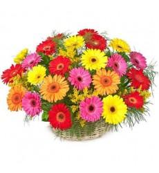 Корзина цветов с 25 герберами «Нахальный ангел»