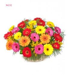 Корзина цветов с 25 герберами и зеленью «Минутка счастья»