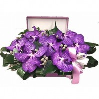 Цветы в коробке  с 7 цветками ванды и зеленью «Лиловая роскошь»