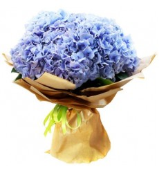Букет из 7 голубых гортензий «Туманное утро»