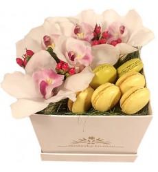 Цветы в коробке с 5 орхидеями и 6 макарони «Жёлтая глазурь»