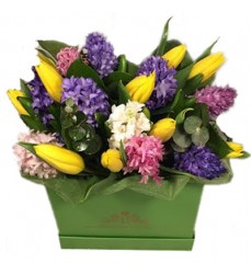 Цветы в коробке  с 12 гиацинтами, 13 тюльпанами и эвкалиптом «Брадаманта»
