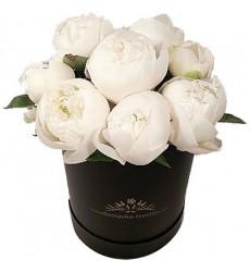 Цветы в шляпной коробке с 15 белыми пионами «Элегантное решение»