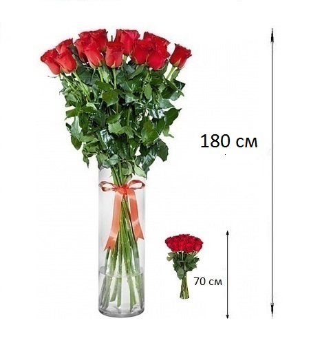 Букет из 25 красных роз «Берега чувств»
