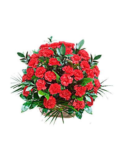 Траурная корзина №14 из живых цветов «50 гвоздик»
