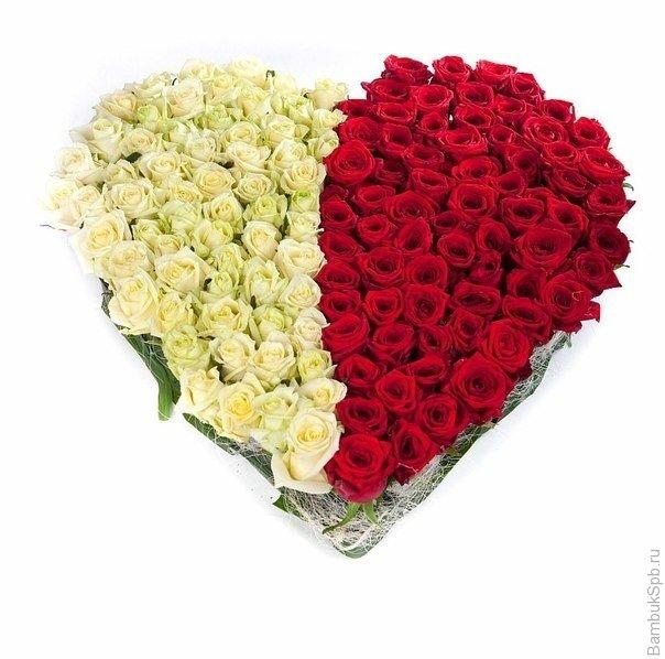 Букет-микс из 101 розы белого и красного цвета в коробке в форме сердечка  «Ализе »