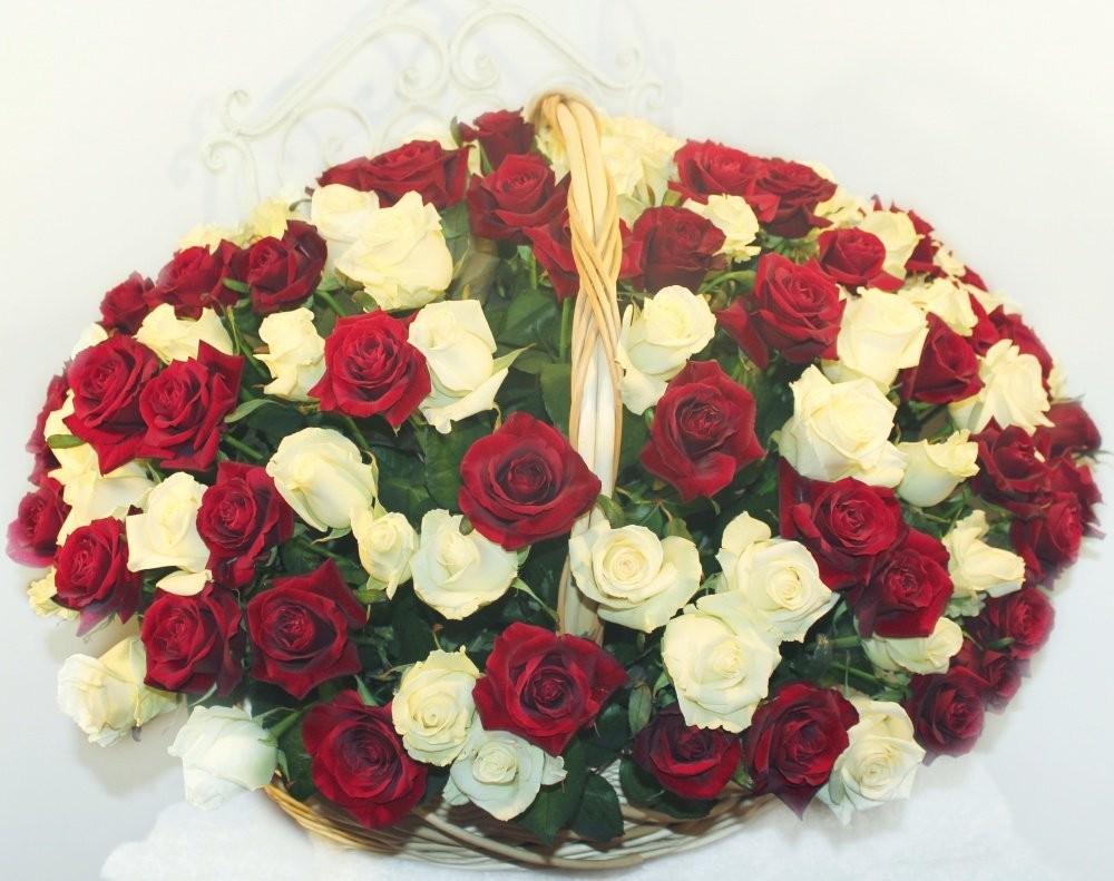 Корзина цветов со 151 красной и белой розами «Сердце баронессы»