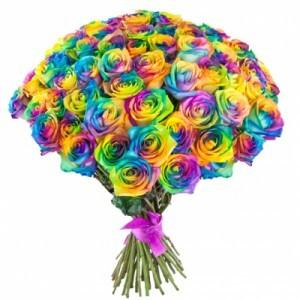 Букет  из 75 радужных роз «Краски радости»