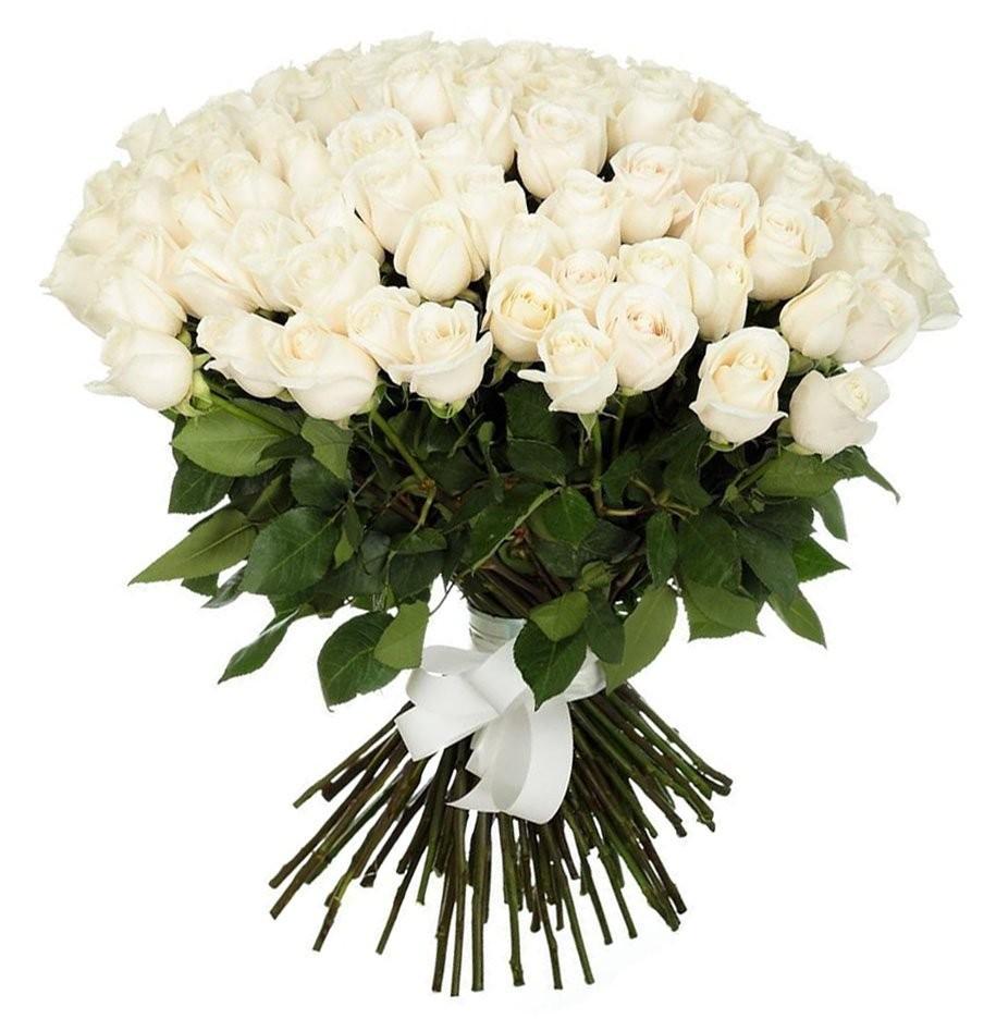 Букет из 51 белой эквадорской розы Мондиаль «Океан любви»