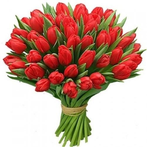 Букет из 51 красного тюльпана «Эйфория»