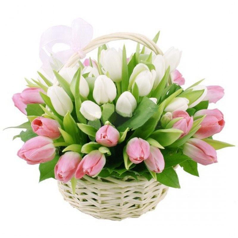Корзина цветов с 51 розовым и белым тюльпанами «Сплетение сердец»
