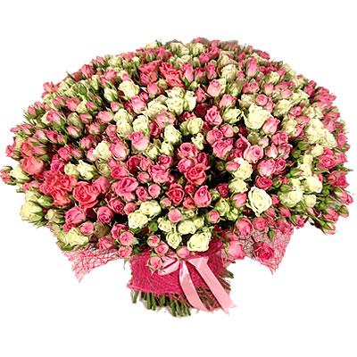 Букет из 201 кустовой розы «Порыв нежности»