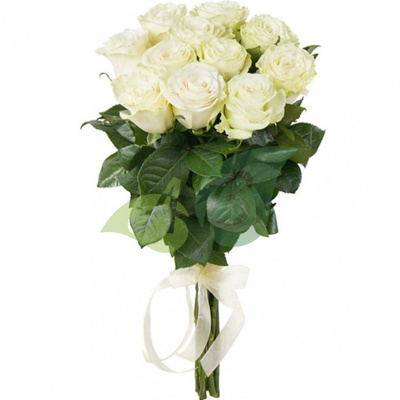 Букет из 10 белых роз «Альгеро»