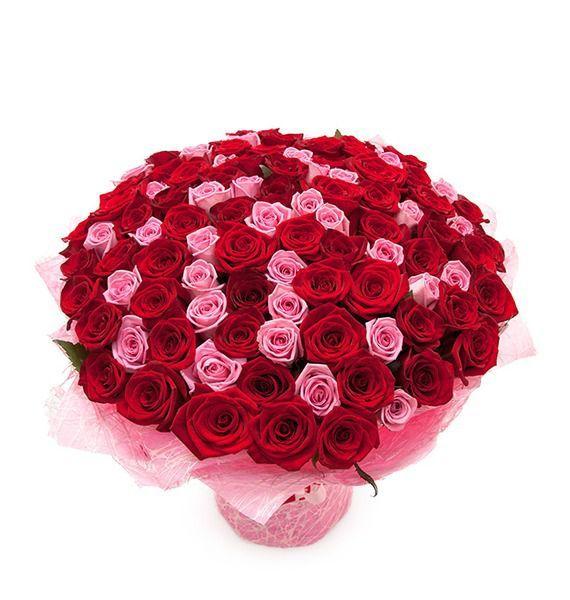 Букет из 65 роз Гран При и 36 розовых роз «Французская романтика»