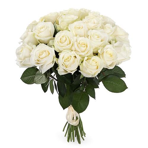 Букет из 31 чисто-белой розы «Ясное утро»