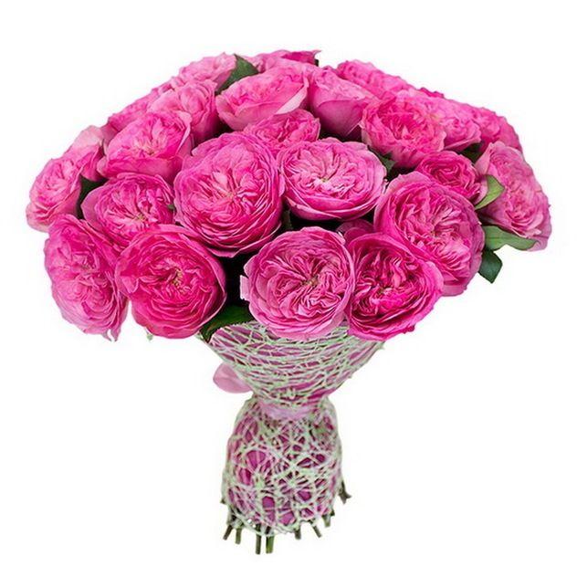 Букет из 23 пионовидных роз Баронесса «Танцующая в темноте»