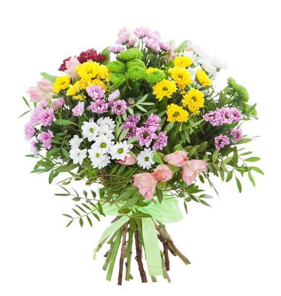 Букет из 2 альстромерий, 11 хризантем Сантини и зелени «Летний луг»