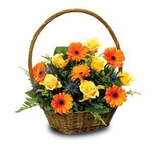 Корзина цветов из 8 гербер, 7 жёлтых роз и 5 папоротников «Плод любви»
