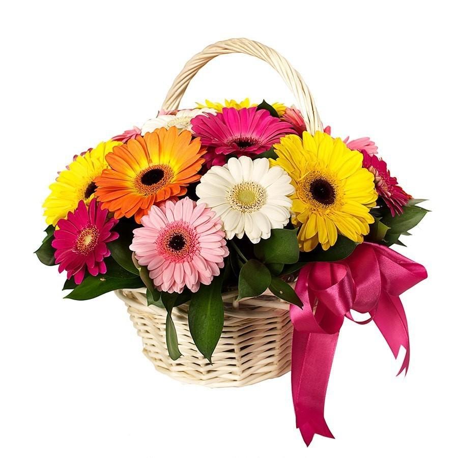 Корзина цветов с 15 разноцветными герберами «Мелодия цветов»