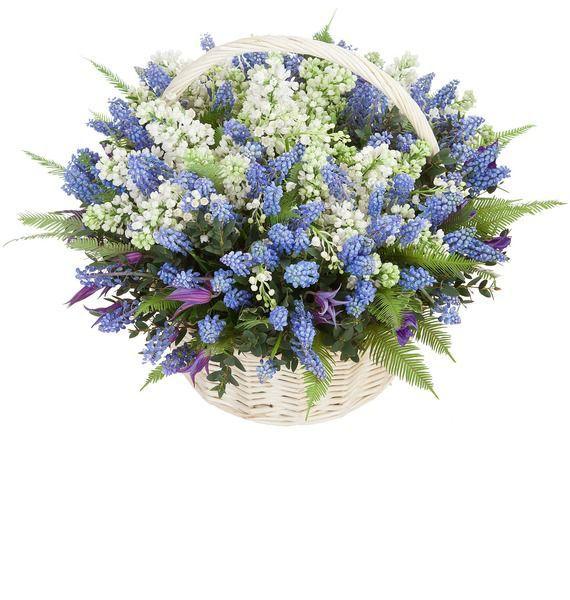 Корзина цветов с 25 ландышами и 100 синими мускари «Акварельные сны»