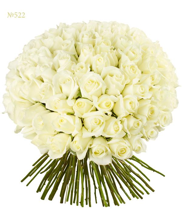 Букет из 101 эквадорской розы «Совершенный ангел»
