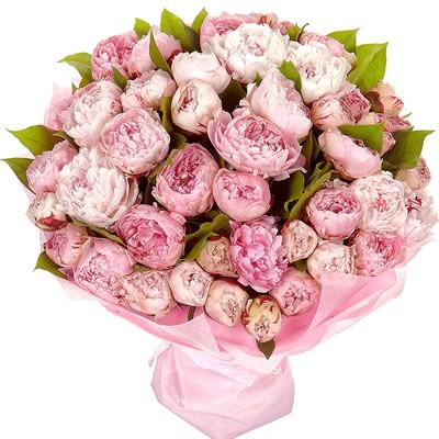 Букет из 55 розовых пионов  «Нежный пурпур»